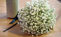 Bouquet nebbiolina